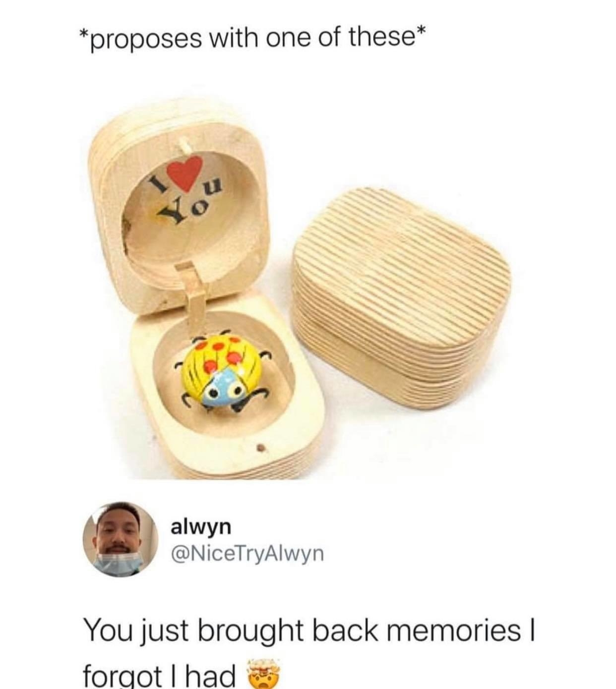 those wooden boxes with ladybugs inside them