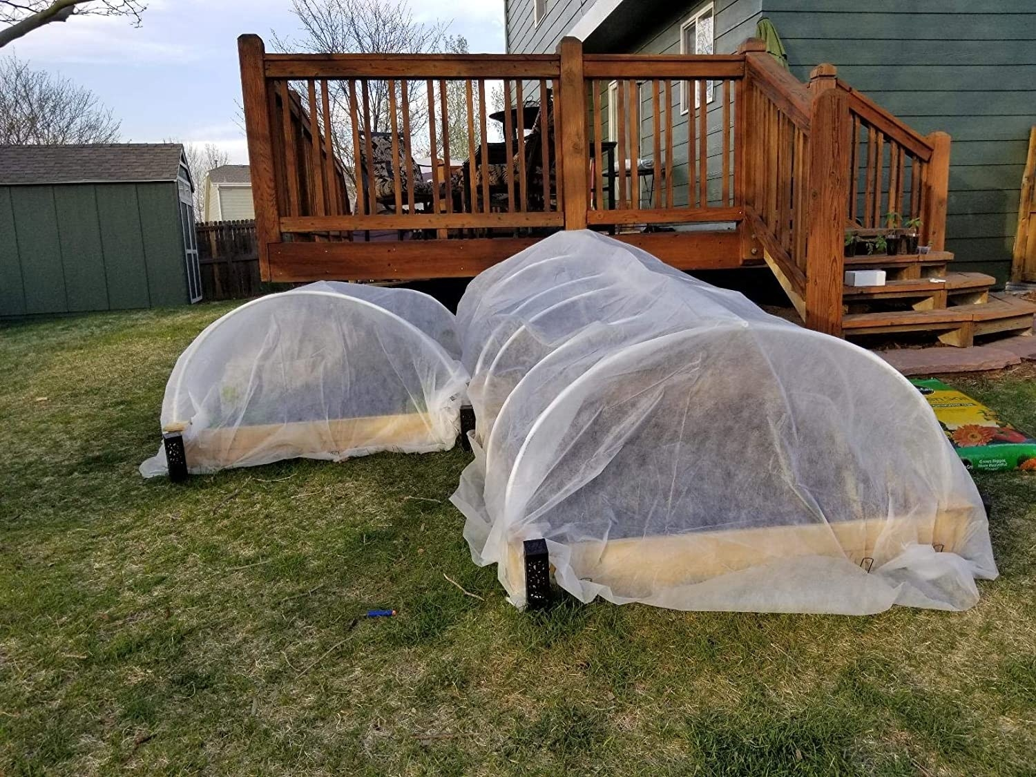 reviewer pier of the net-like covers over long raised garden beds