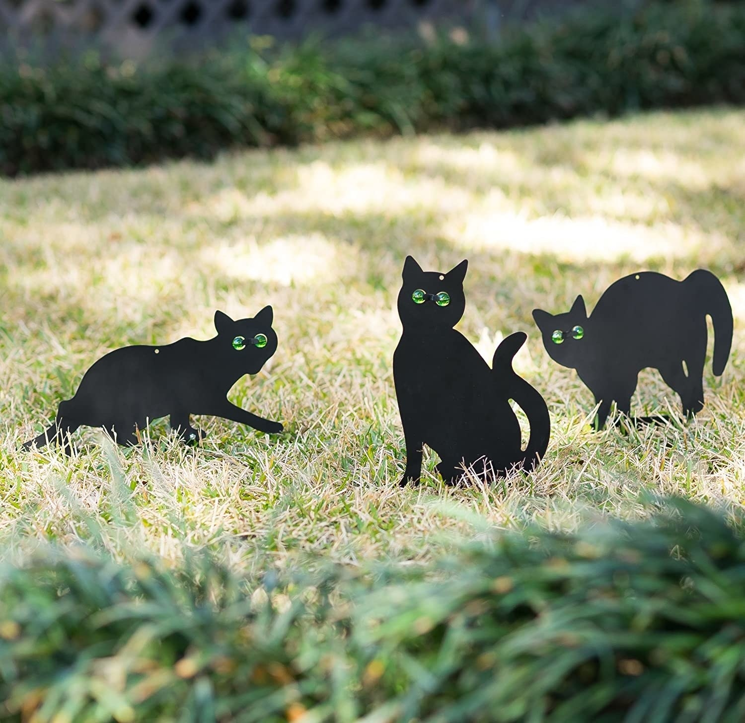 The black scare cats, which are about the size of a real cat and have reflective eyes