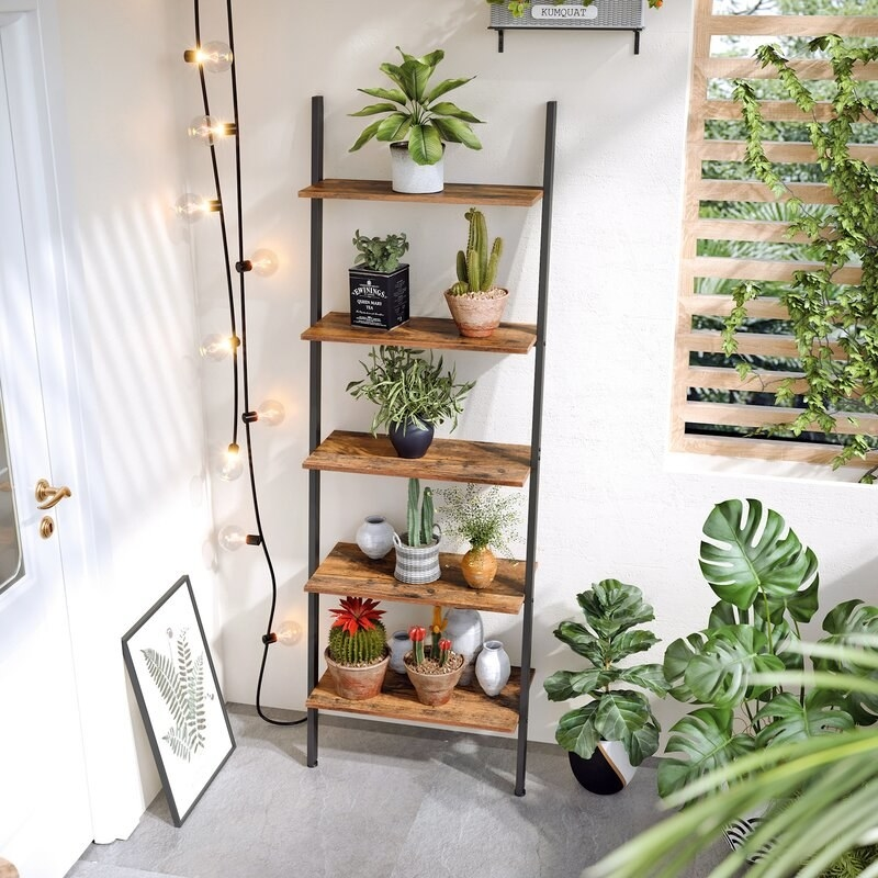 A ladder bookcase with dark wood shelves and black rails holding plants