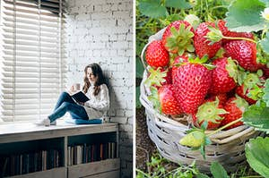 On the left, someone sits near a window with a cup of tea in one hand and book in the other, and on the right, a basket of strawberries