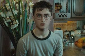 Harry Potter sitting in a kitchen