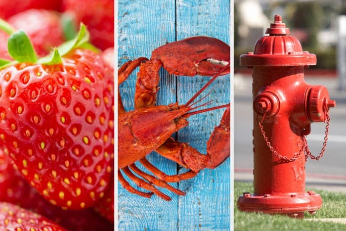 Three pictures side by side of a strawberry, a lobster, and a fire hydrant