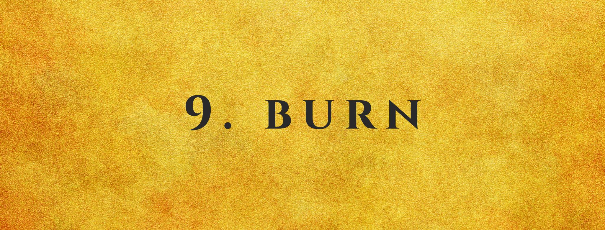 #9 Burn