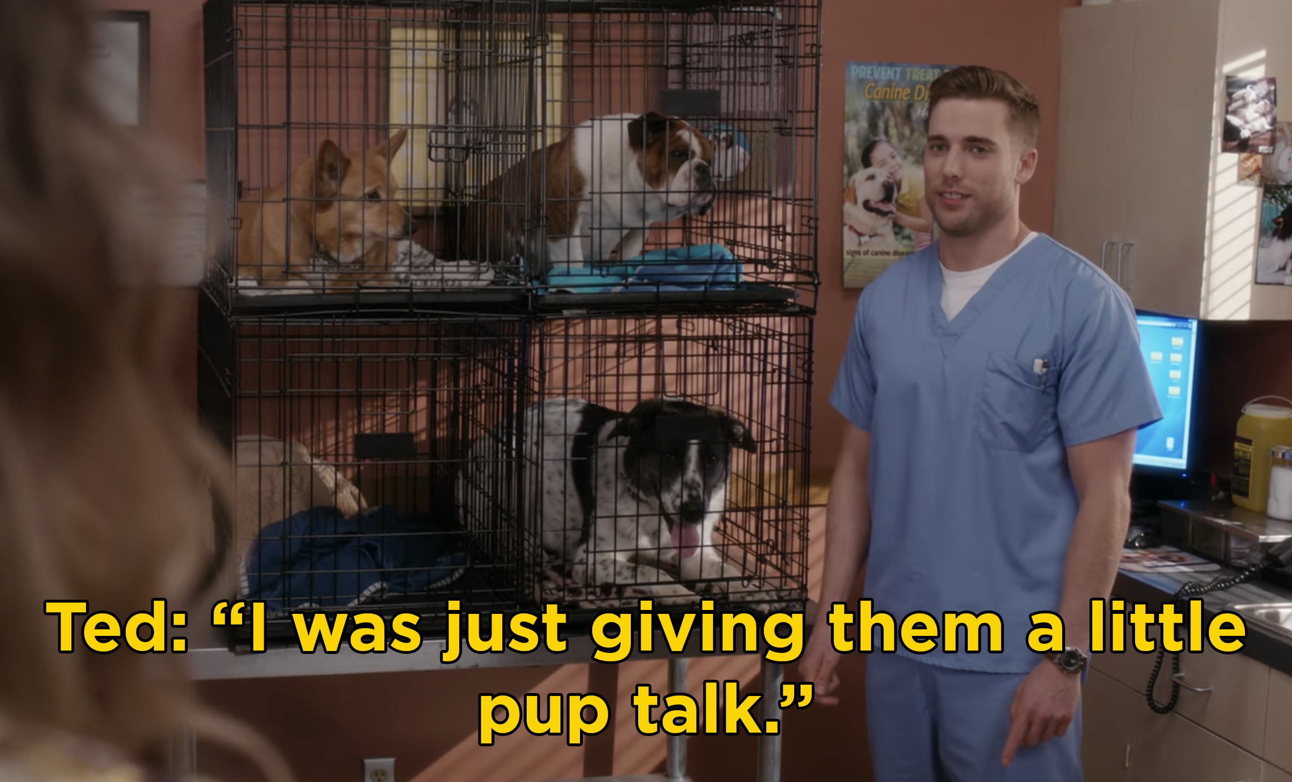 "Ted saying ""I was just giving them a little pup talk"" in front of kennels of puppies"