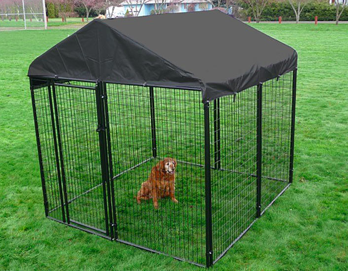 Golden dog sits inside black kennel with a waterproof cover on a field