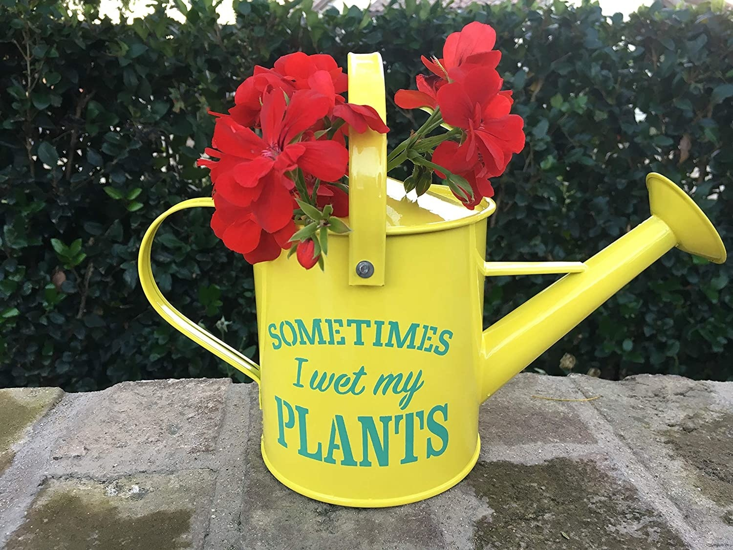 "A metal watering can that says ""Sometimes I wet my plants"""