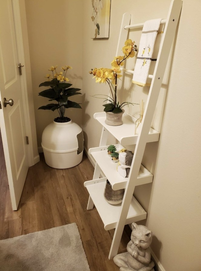 The planter-like litter box that's perfectly blended in the reviewer's home