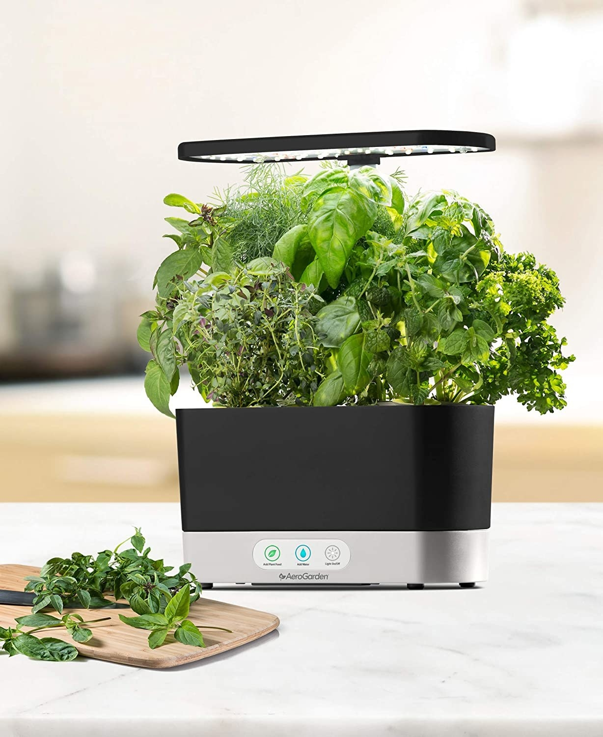 """The product; it has a black oval base """"pot"""" with an oval grow-light that sits above the herbs growing out of the pot. It's growing mint, basil, dill, thyme, and two other herbs"""