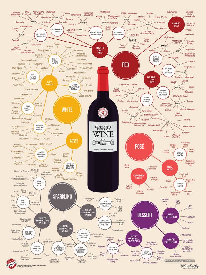 A poster containing hundreds of wine varietals and their descriptions.