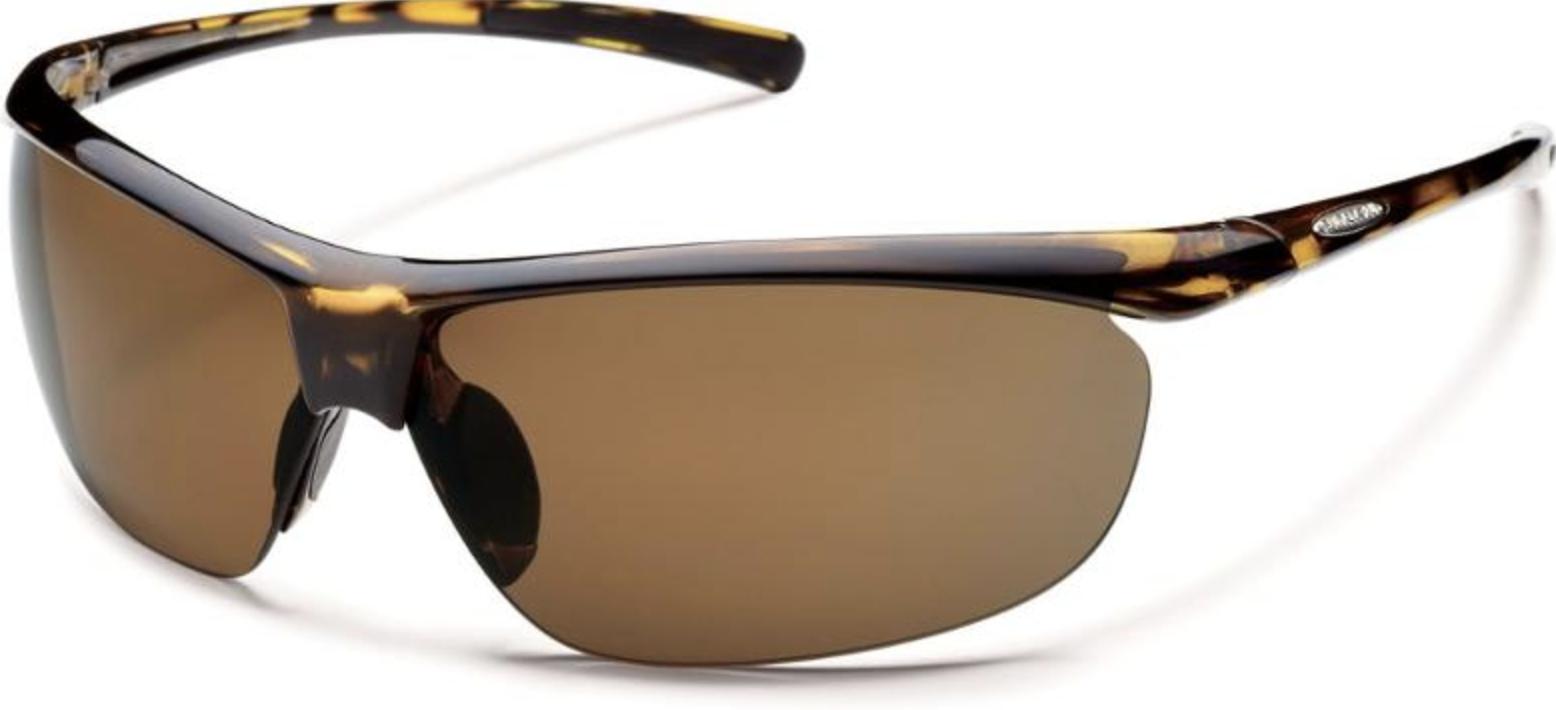 sleek tortoise shell glasses with brown lenses