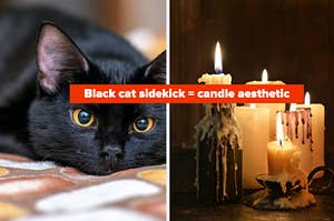 black cat sidekick = candle aesthetic