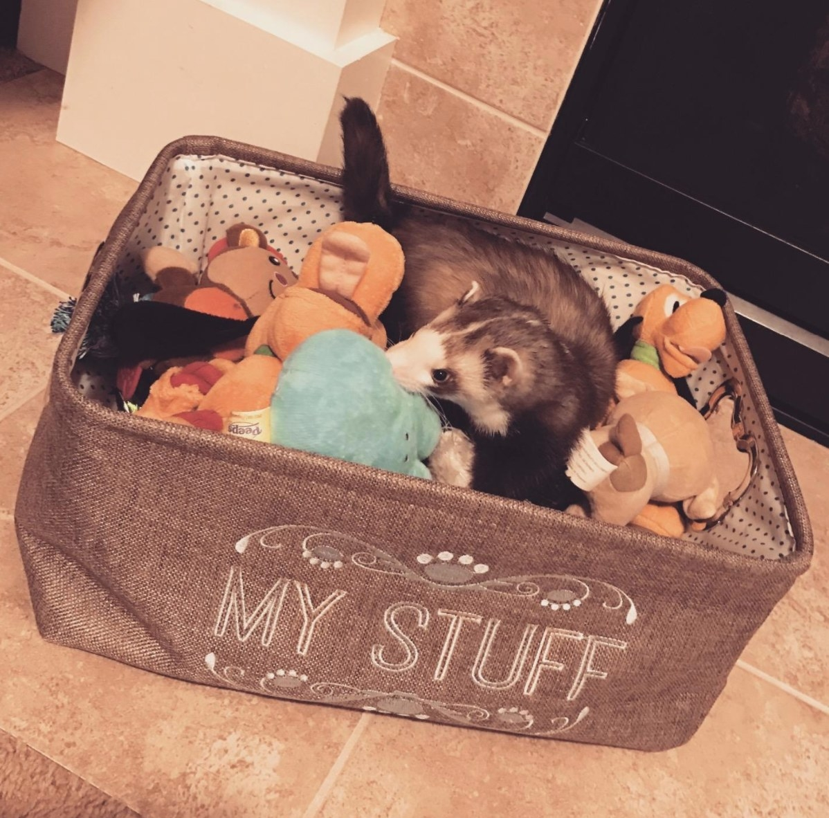 Reviewer's image of the toy bin