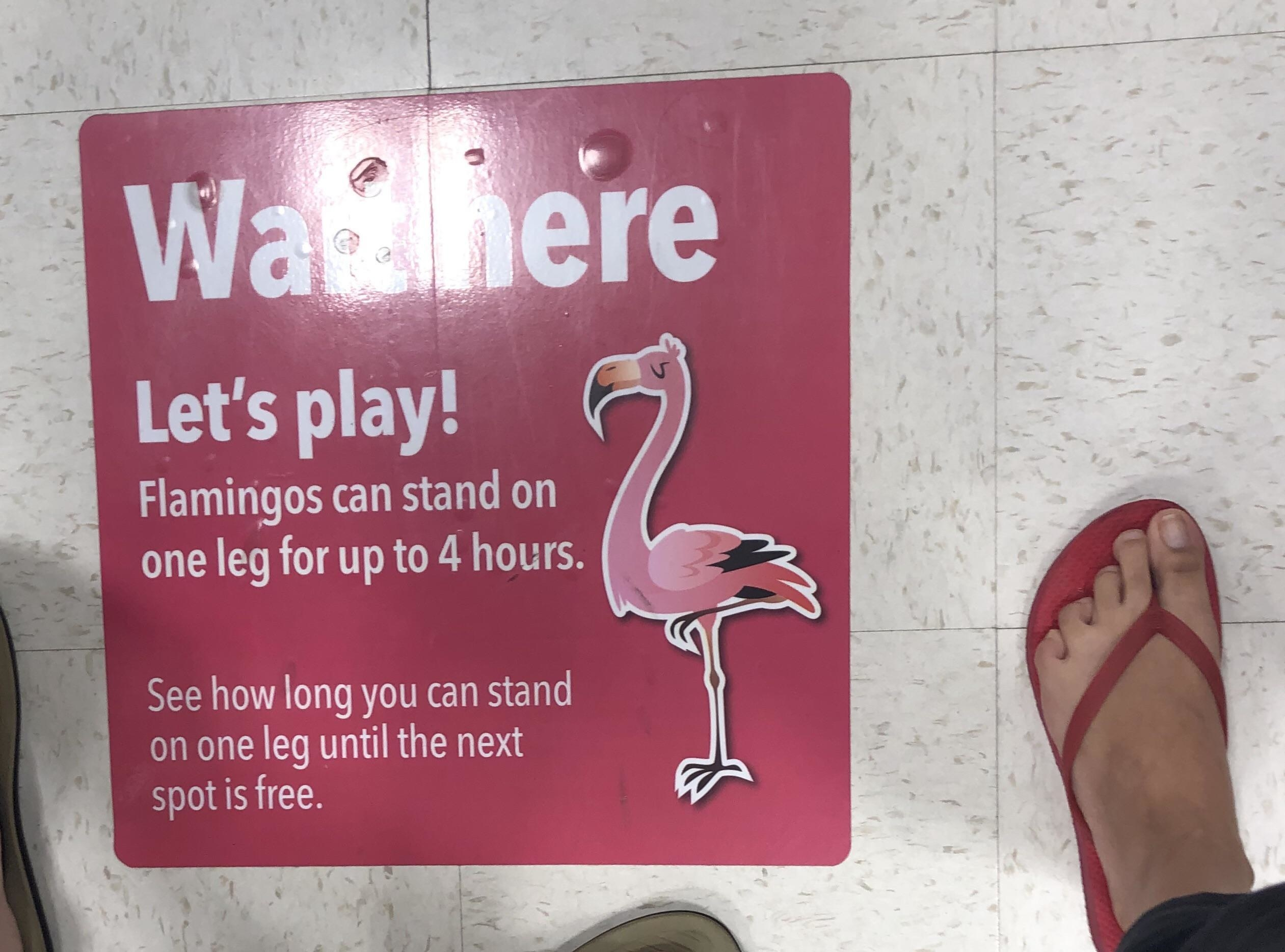 a floor marker featuring a flamingo on it, encouraging kids to stand on one leg