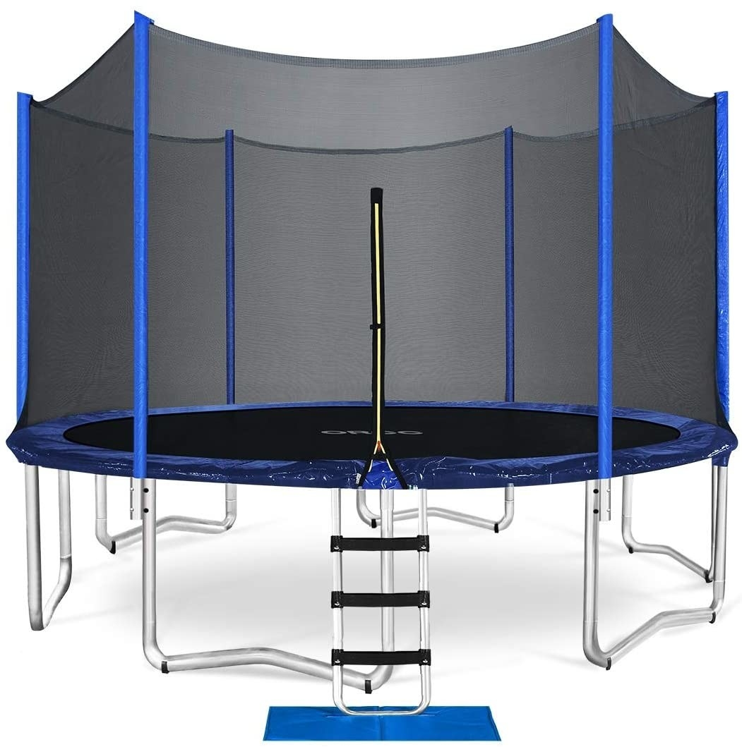 The circular trampoline with a safety net around the sides and a step ladder