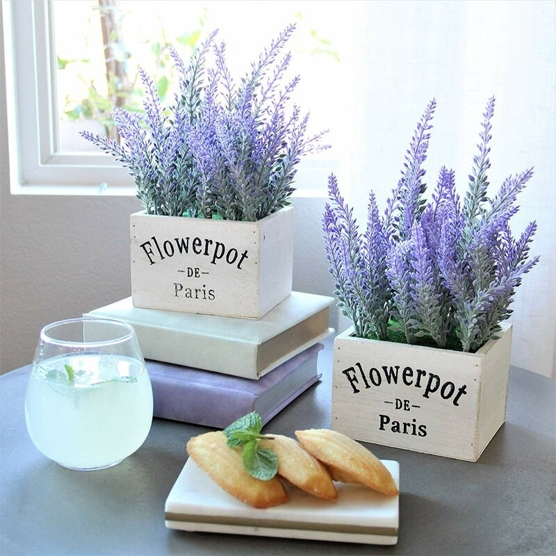 two small box-shaped vases with lavender flowers coming out of them