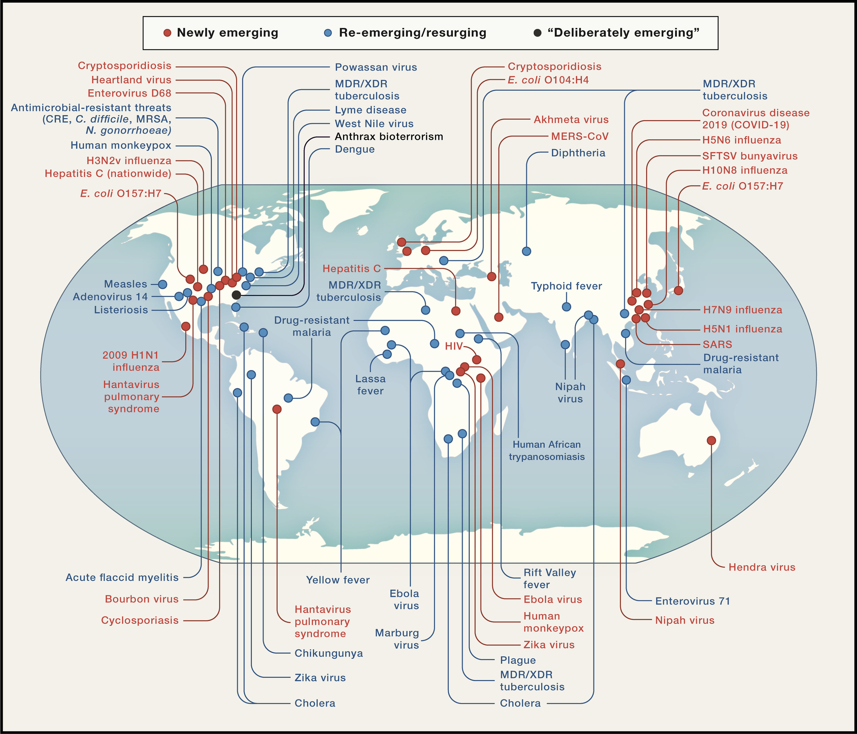 Infectious diseases since 1981 / Cell