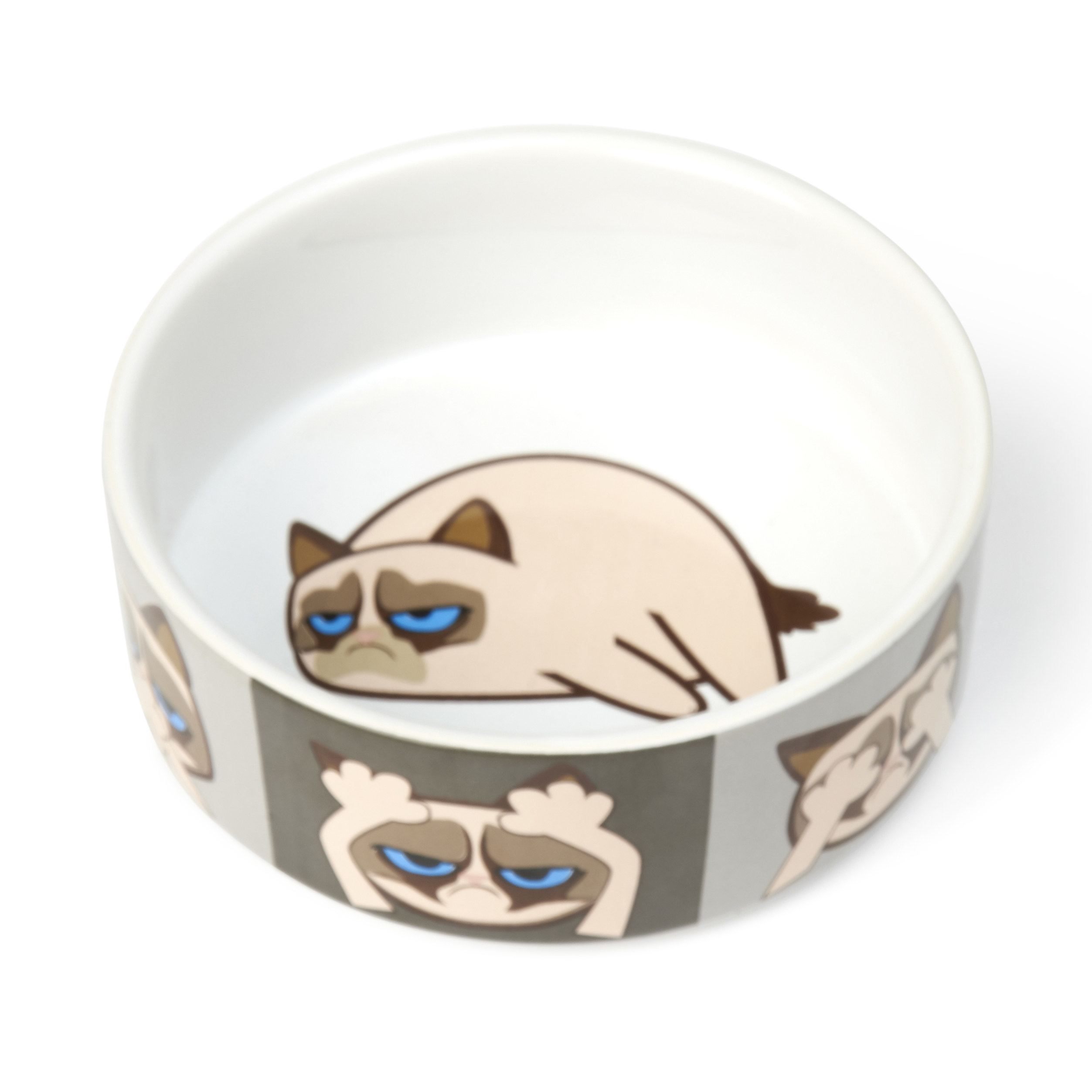 An animated grumpy cat drawn on the inside and along the rim of a white cat food bowl