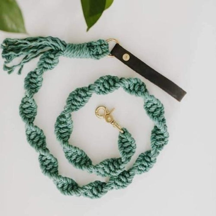 Product photo showing the teal macrame leash