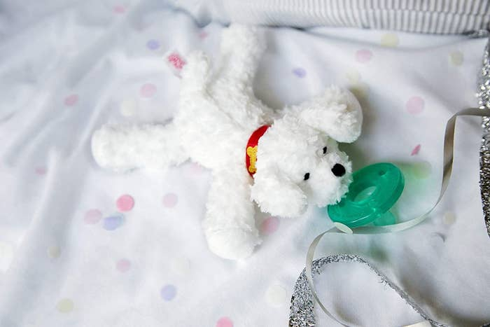Small white dog plushie connected to classic pacifier