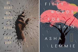"""(Left) """"At Night All Blood Is Black by David Diop"""" (Right) """"Fifty Words For Rain by Asha Lemmie"""""""