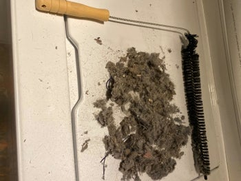 Reviewer's image of dryer brush with a large amount of lint