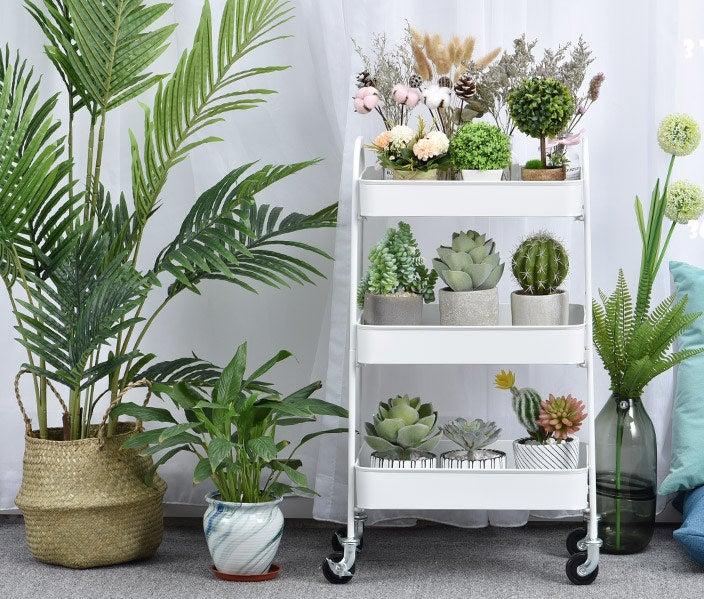 Plants kept in the 3-tier white metal rolling cart.