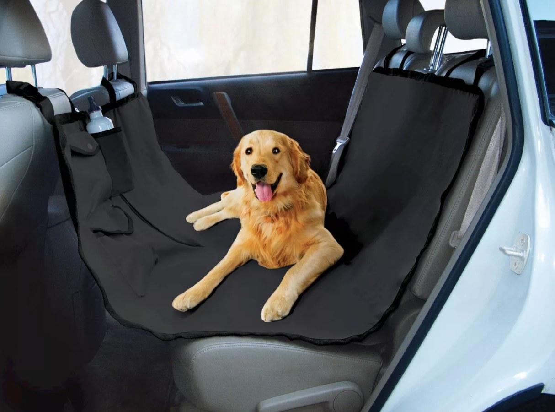 golden retriever sitting in black hammock in car