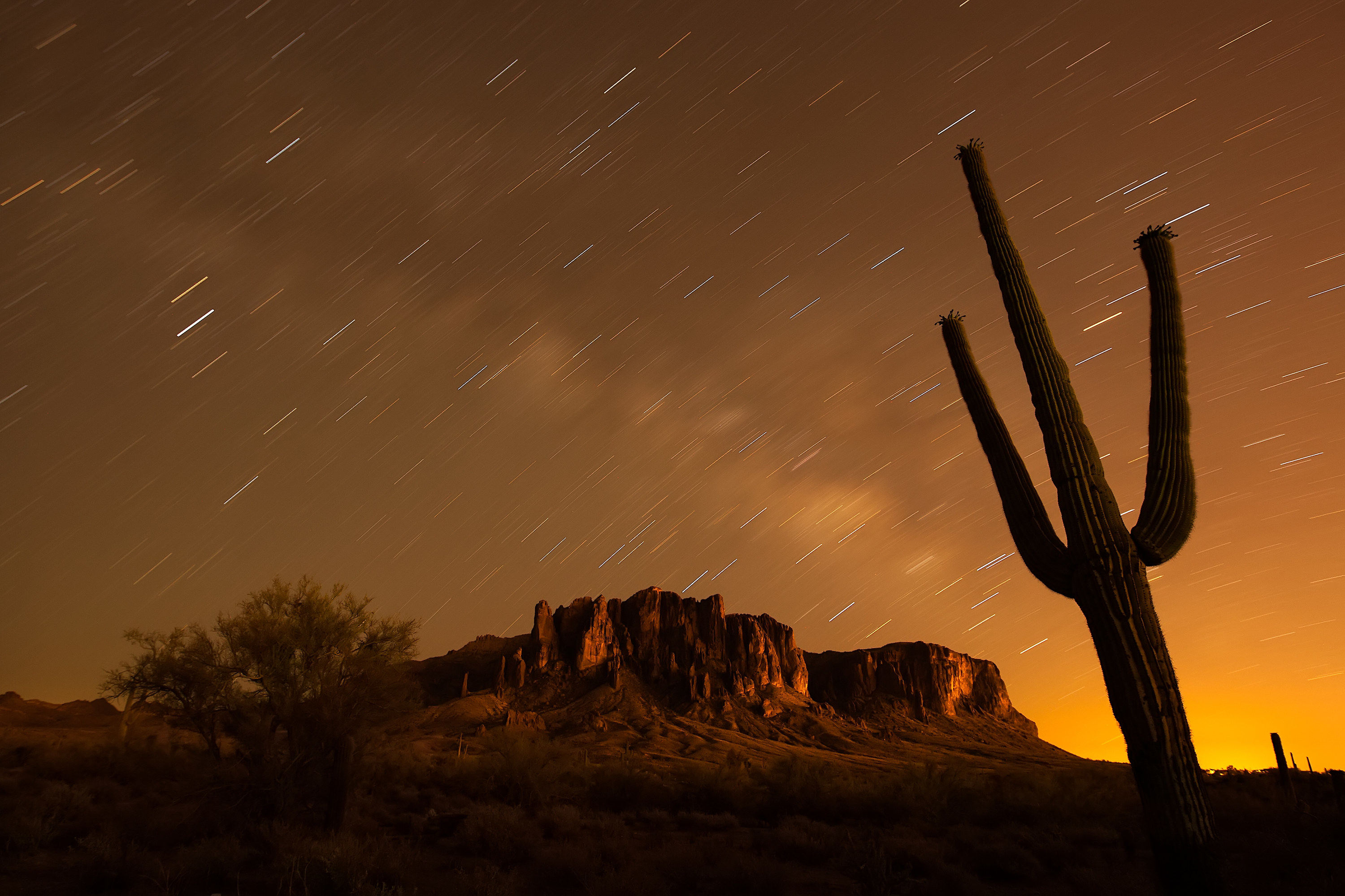 a cactus in the foreground with blurry star trails and the Superstition Mountains in the background, in Lost Dutchman State Park