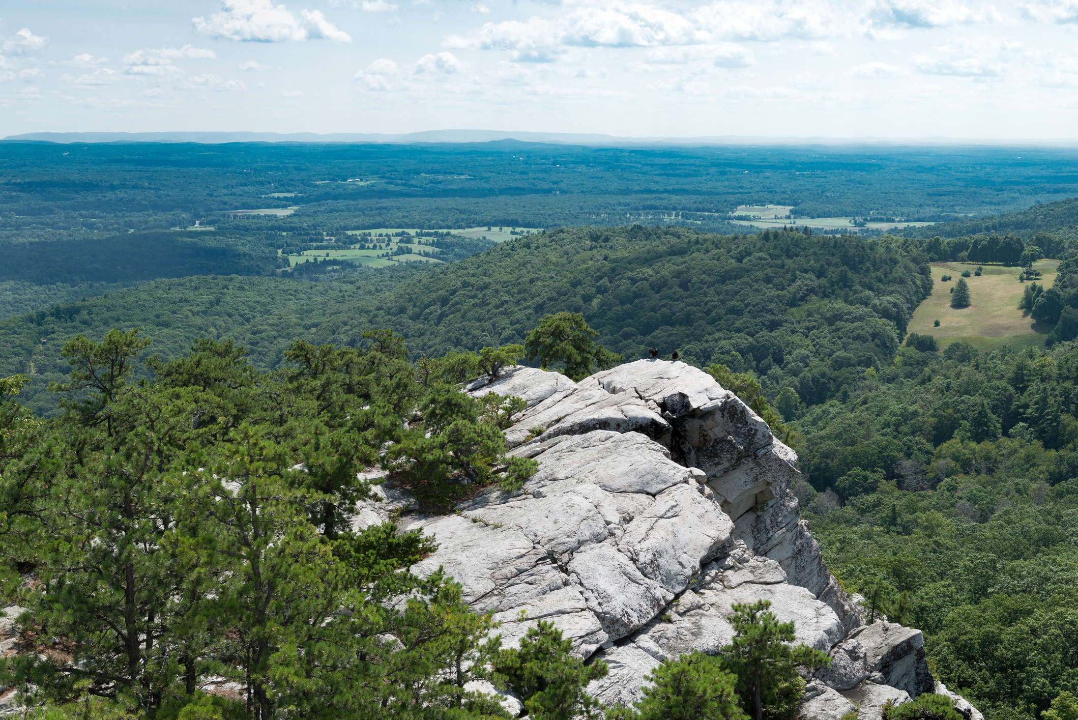 view of a white rocky cliff surrounded by lush trees over Mohonk Preserve