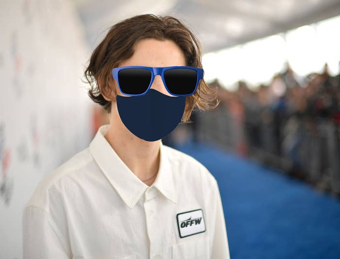 Timothée Chalamet on the red carpet with a poorly photoshopped pair of sunglasses and a face mask