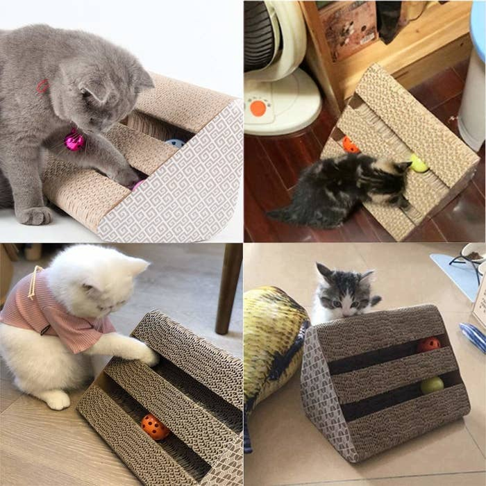 Images of cats playing with the scratching post.