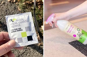 on the left, on-the-go walk wipes and on the right, a stain and odor remover