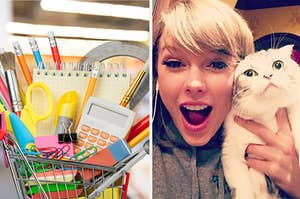School supplies and Taylor Swift holding a cat.