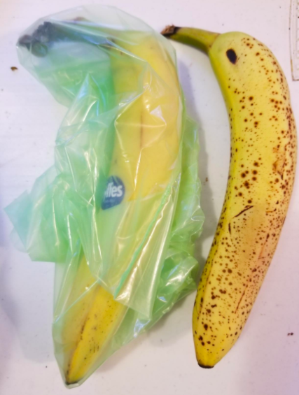 On the left, a barely browned banana in one of the bags. On the right, a banana with lots of brown spots, not in a bag