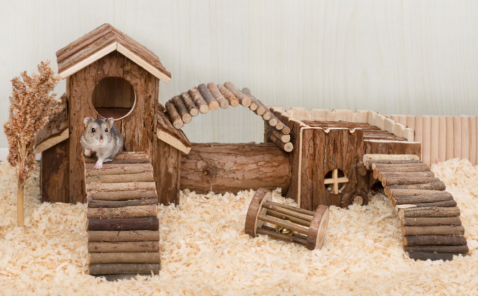 hamster on a wood tunnel system in a cage