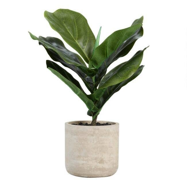 The fake plant in a rustic cement pot (included)