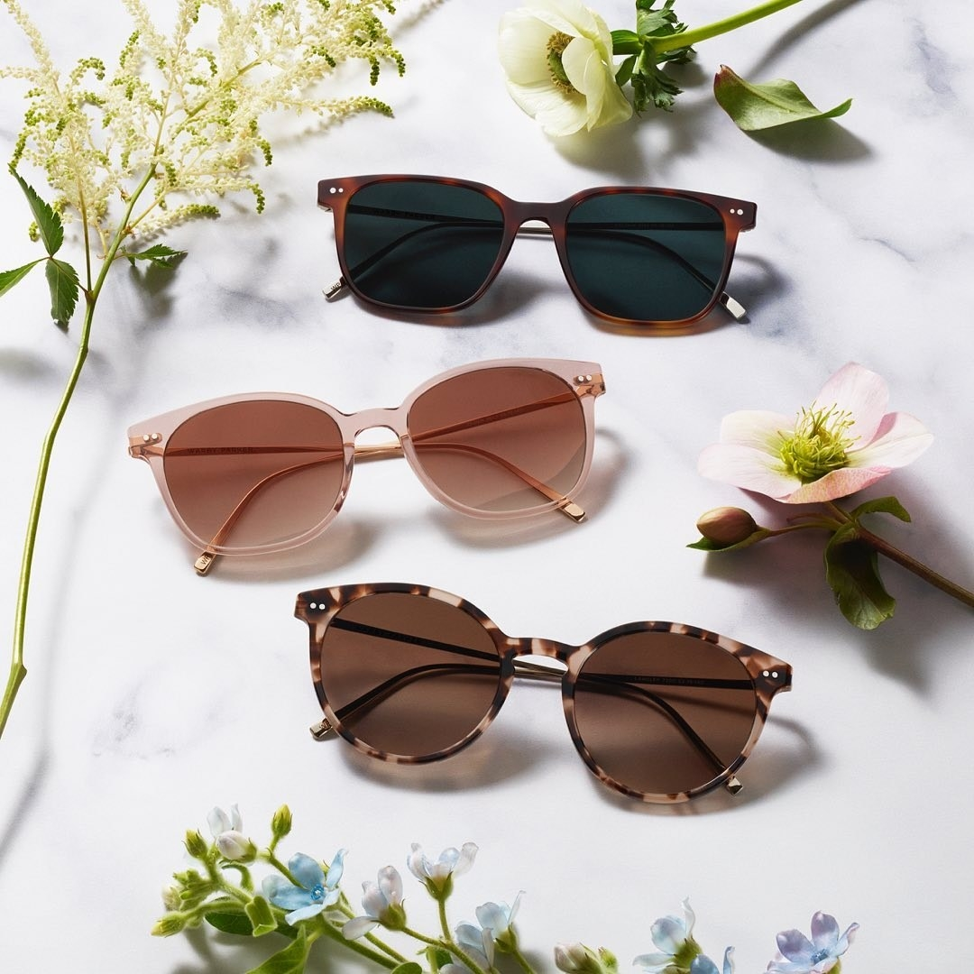 three pairs of sunglasses, two with tortoise shell styling and one clear pink pair