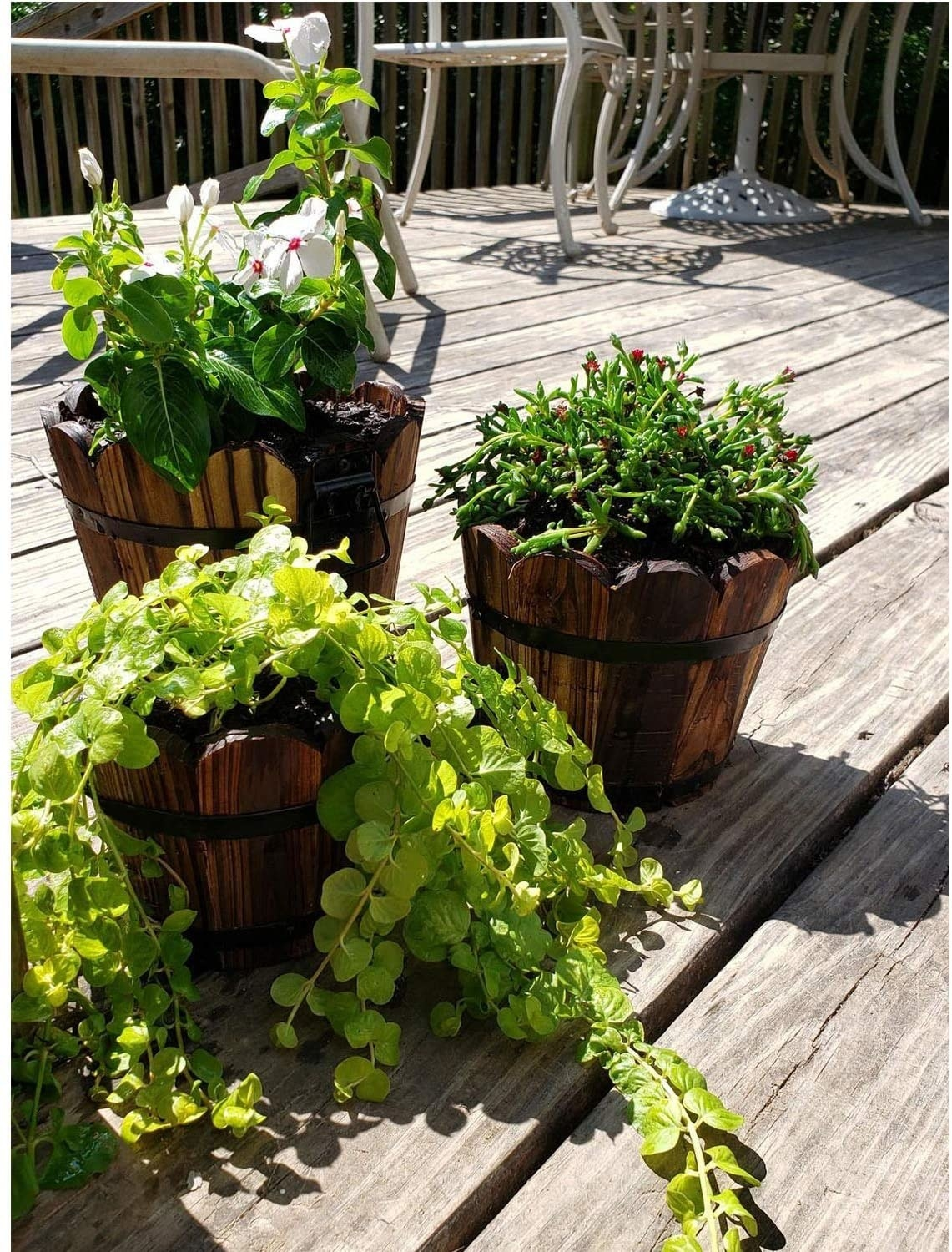 three wooden barrel pots with plants in them