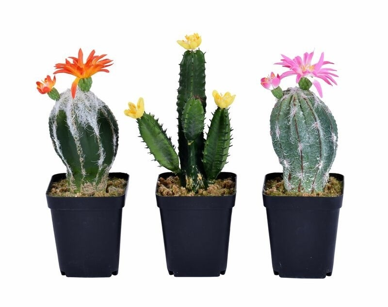 Three faux cacti with orange, yellow, and pink flowers