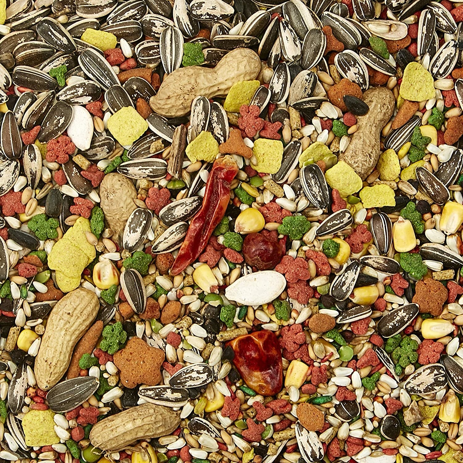 A close up of seeds, peanuts, corn kernels and other treats for parrots