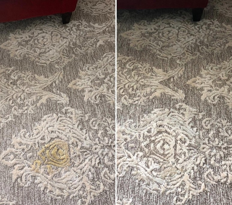 Before-and-after of pee-stained carpet, and then 98% clean
