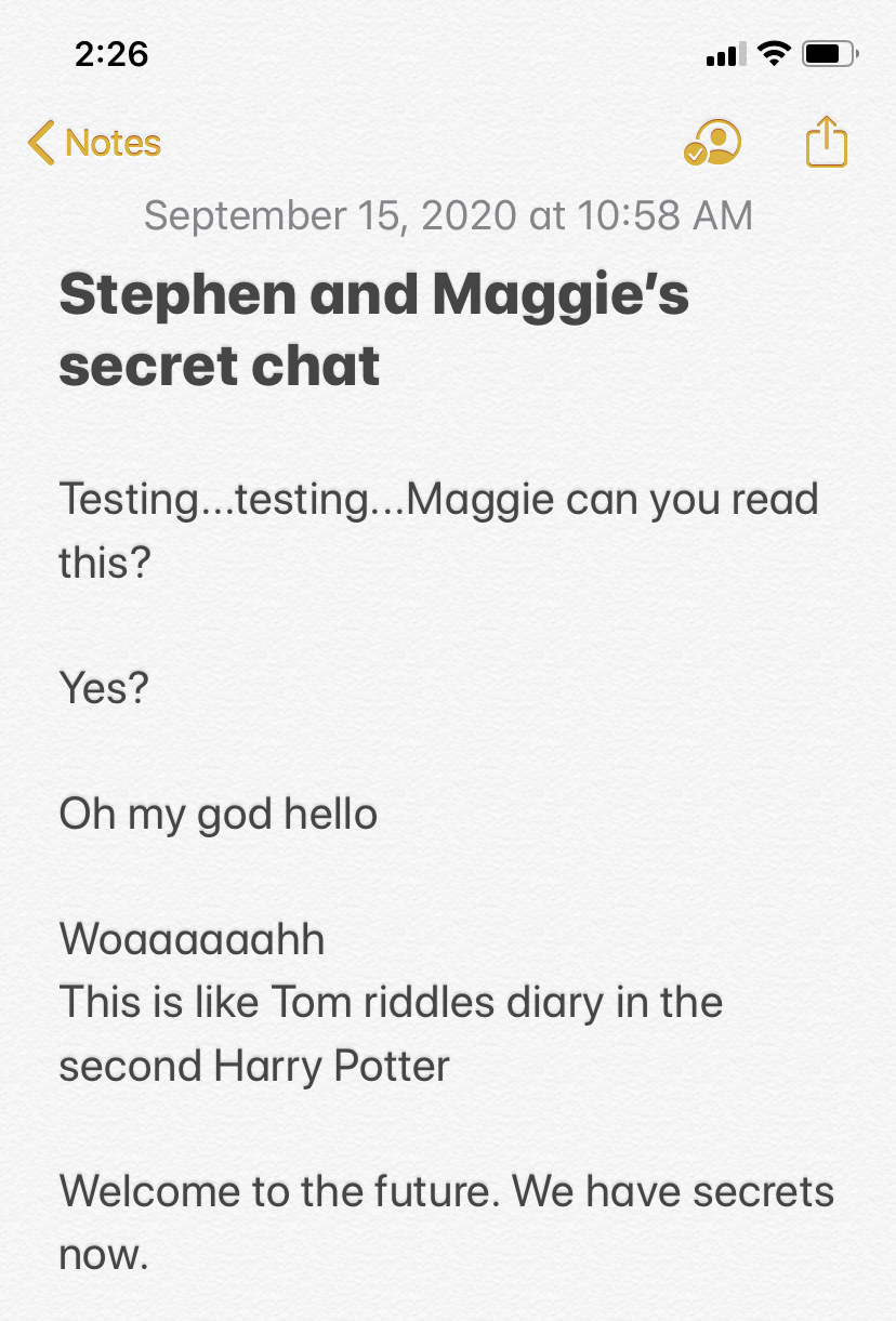 Screenshot of a Notes app conversation
