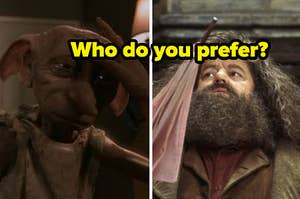 """Dobby is on the left with Hagrid on the right labeled, """"Who do you prefer?"""""""