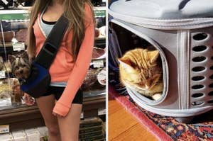 to the left: a dog owner wearing their dog in a side sling bag, to the right: a cat in a carry basket