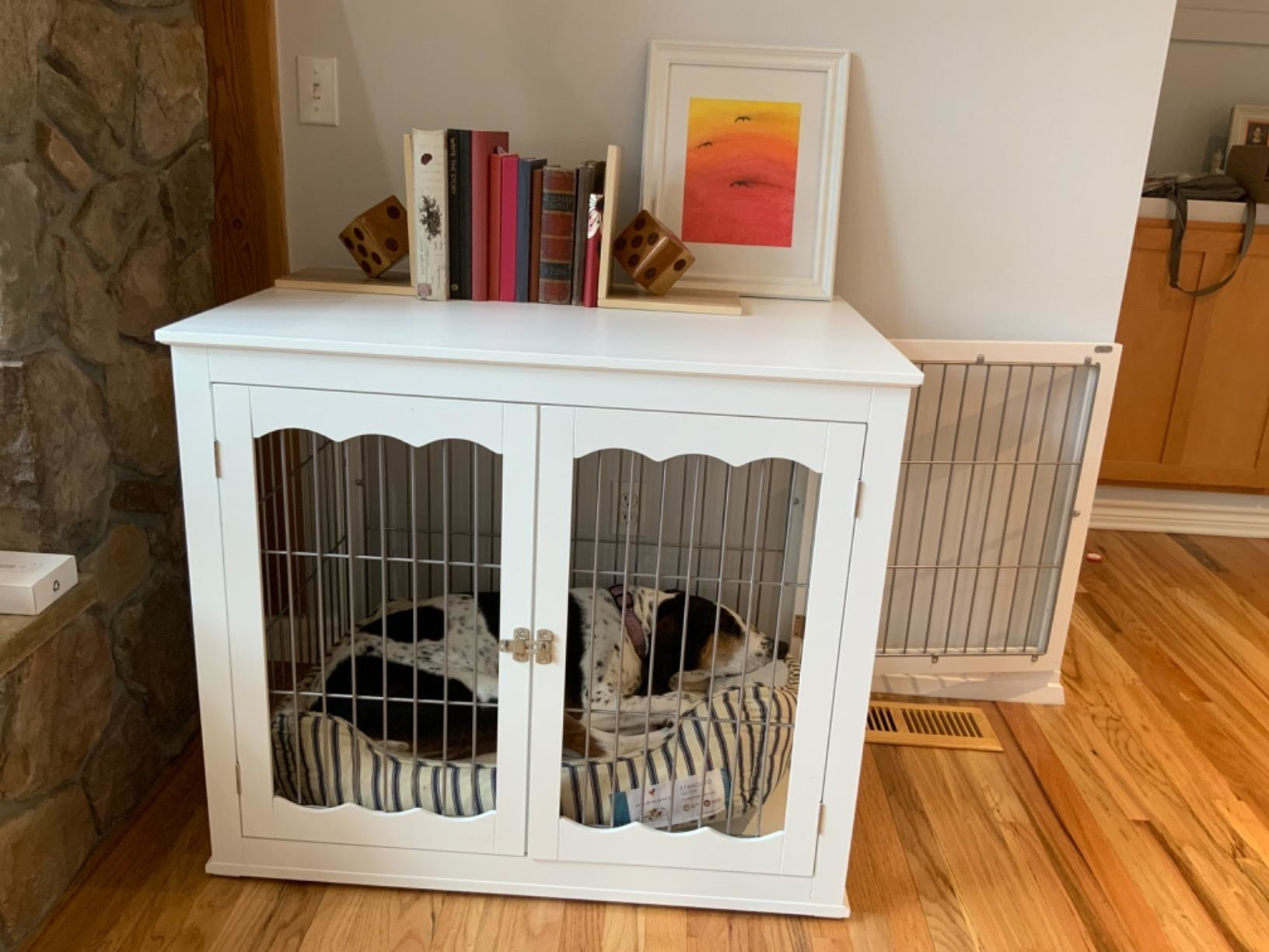 The crate with books placed on top, the side door open, and a dog sleeping on a dog bed inside