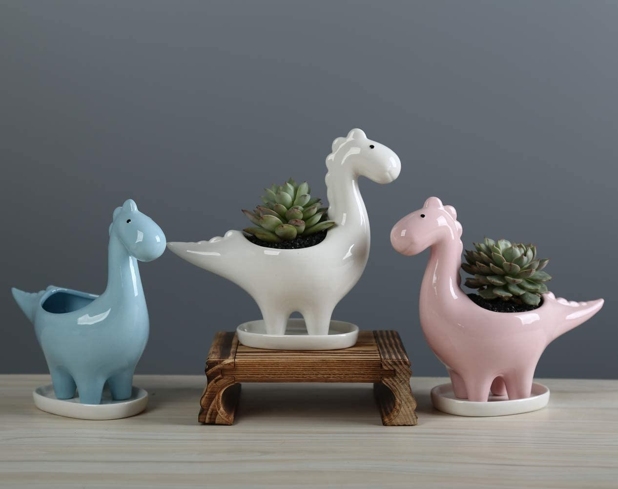 The small/medium-sized planters in blue, white, and pink, holding succulents