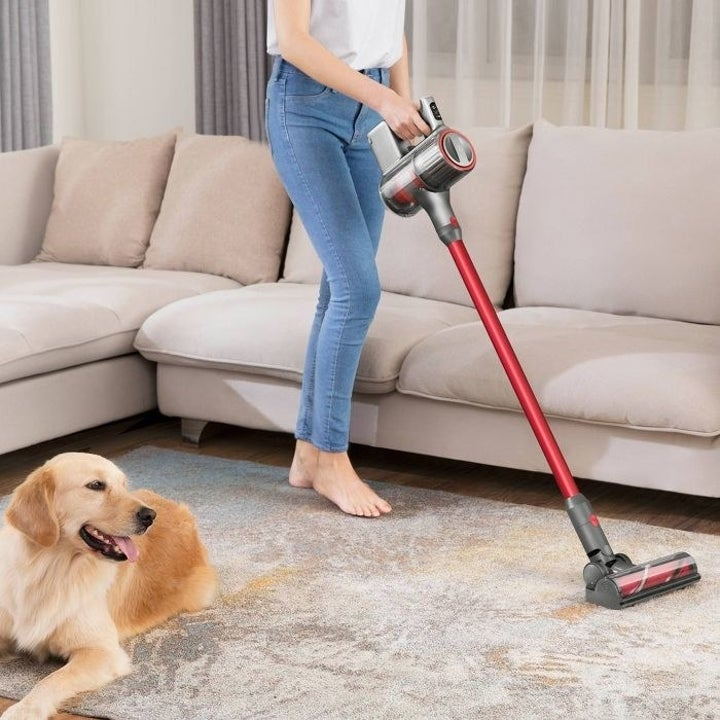 A model using the Roborock H6 Cordless Stick Vacuum to vacuum dog hair from a carpet in a living room