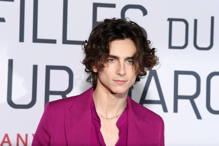 """Timothée poses at the """"Little Women"""" premiere in France"""