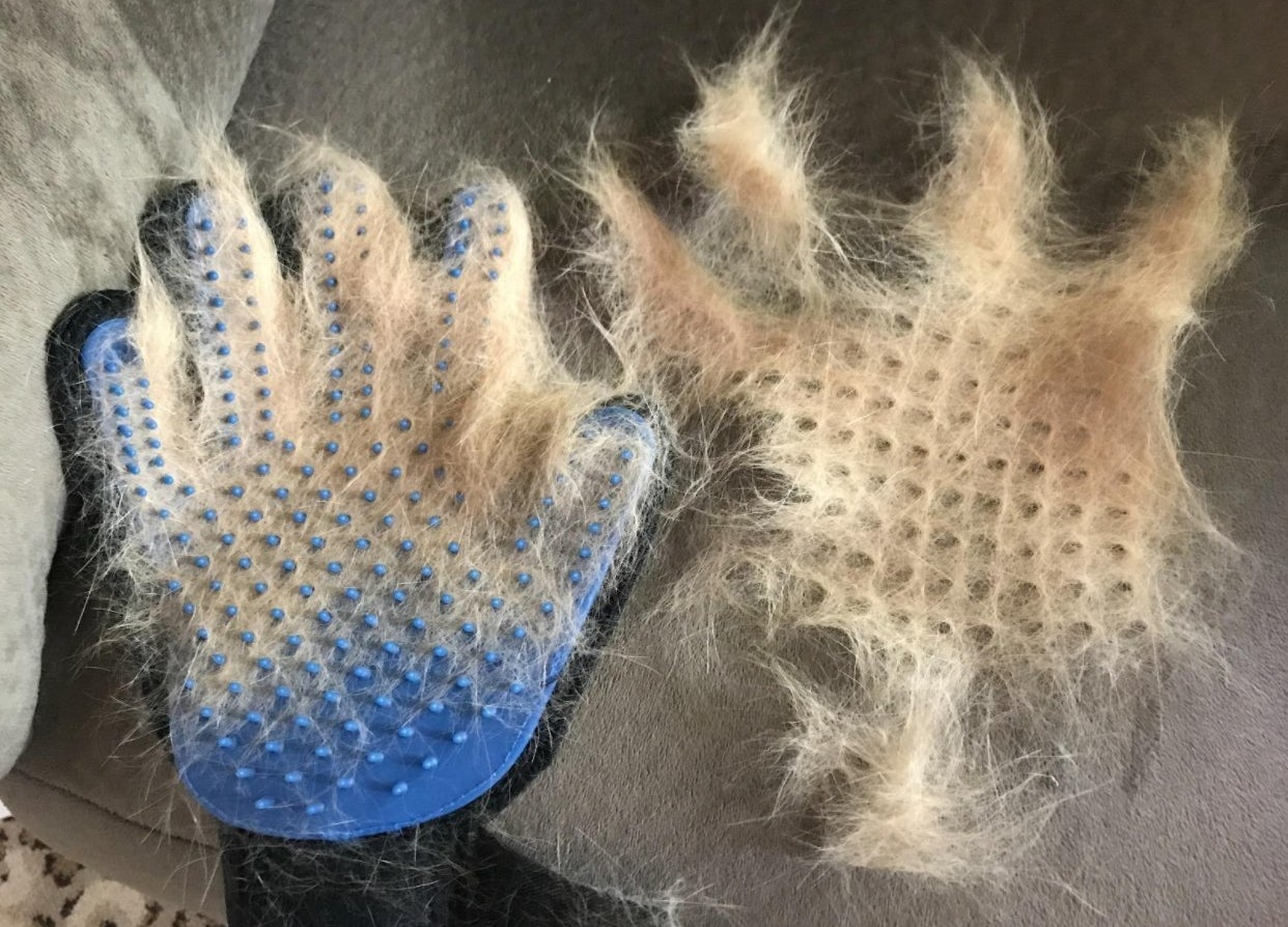The reviewer showing the hair she removed with her cat after using the glove